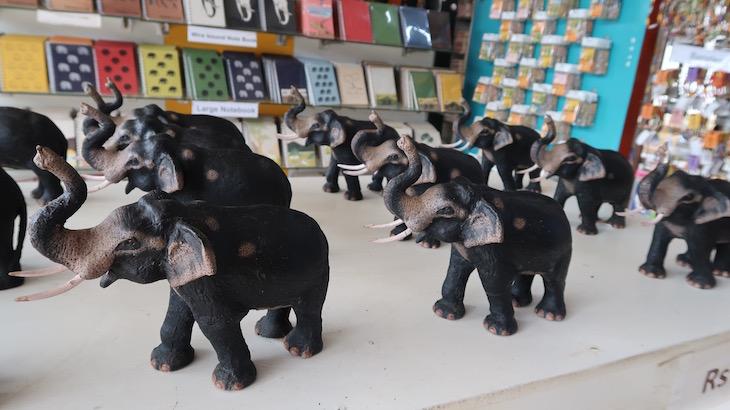 Feitos papel a partir de fezes de elefante - Sri Lanka © Viaje Comigo