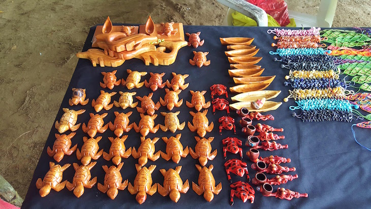 Tartarugas de madeira - Isla Colon - Bocas del Toro, Panamá © Viaje Comigo