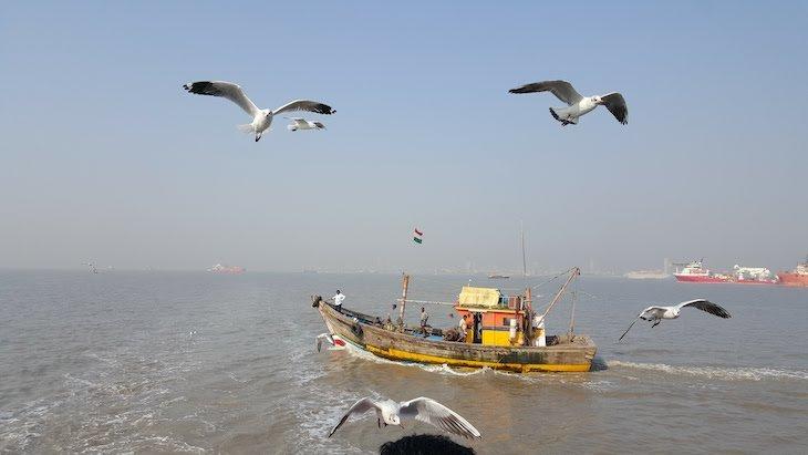 Gaivotas no barco a caminho das Elephanta Caves - Grutas de Elefanta - Bombaim - India © Viaje Comigo