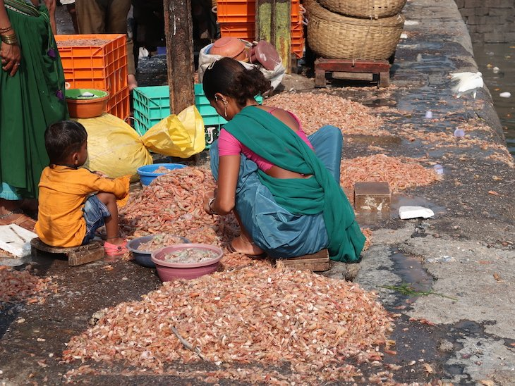 Mercado de peixe Sassoon Docks - Bombaim - India © Viaje Comigo