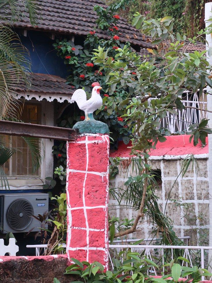 Galos em Goa - Bairro das Fontainhas - India © Viaje Comigo
