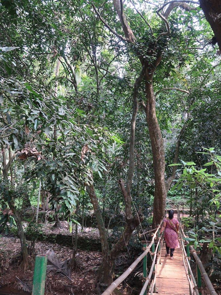Sahakari Spice Farm - Goa ©Viaje Comigo