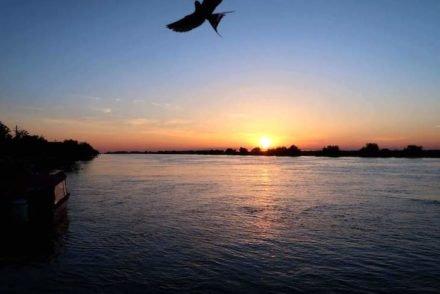 Pôr do sol - Sunrise Hotel - Crisan - Delta do Danúbio - Roménia © Viaje Comigo