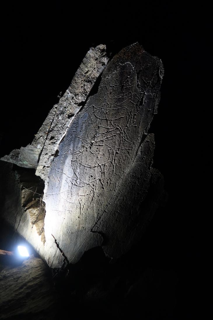 Visita às gravuras de arte rupestre de Vila Nova de Foz Côa - Portugal © Viaje Comigo