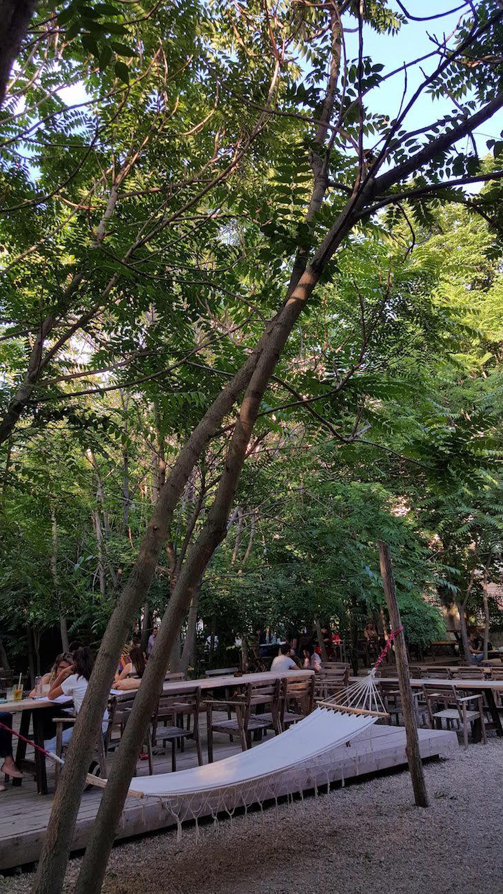 Jardin Eden - uma das esplanadas escondidas de Bucareste - Roménia © Viaje Comigo