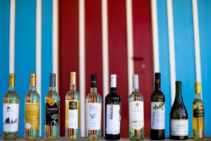 Vinhos da Região Vitivinícola do Tejo em prova. Foto © Gonçalo Villaverde
