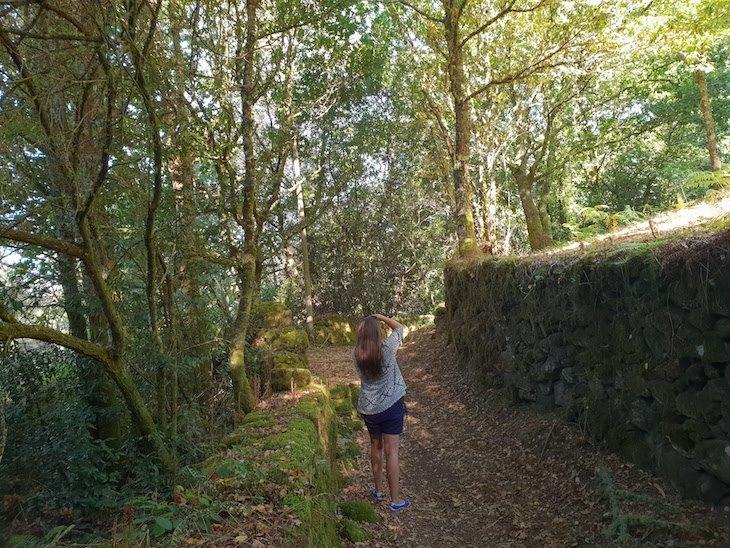 A caminho Passos da Fraga - Pontevedra - Galiza © Viaje Comigo
