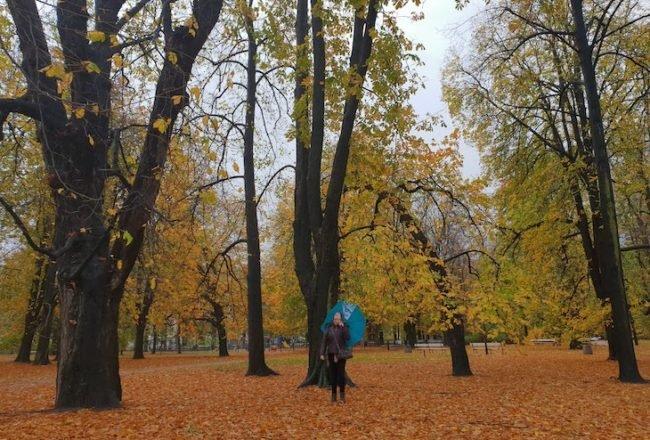 Outono em Varsóvia - Polónia © Viaje Comigo