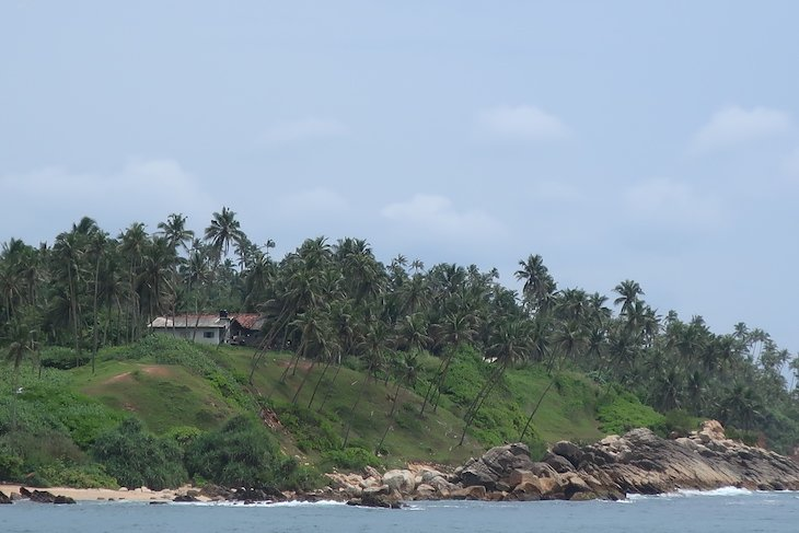 Costa de Mirissa - Sri Lanka © Viaje Comigo