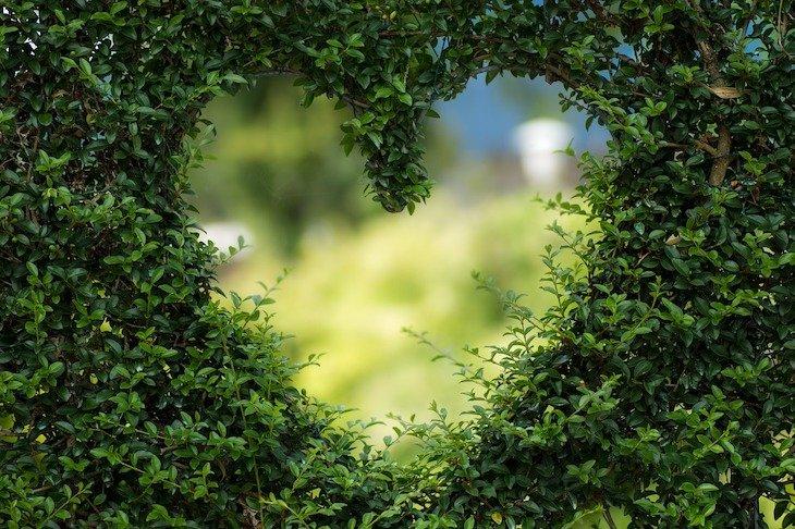 Foto: biancamentil © Pixabay