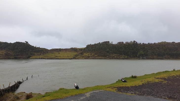 Lagoa do Capitão - Ilha do Pico - Açores © Viaje Comigo