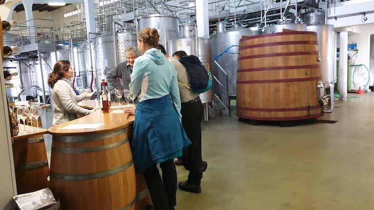 Provas na Cooperativa do Pico - Pico Wines - Açores © Viaje Comigo