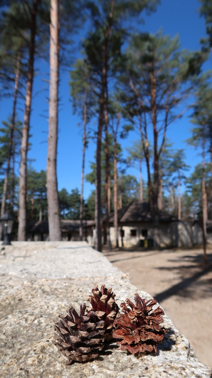 Alvão Village & Camping, Vila Pouca de Aguiar © Viaje Comigo