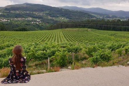 Marques de Vizhoja - Rias Baixas - Espanha © Viaje Comigo