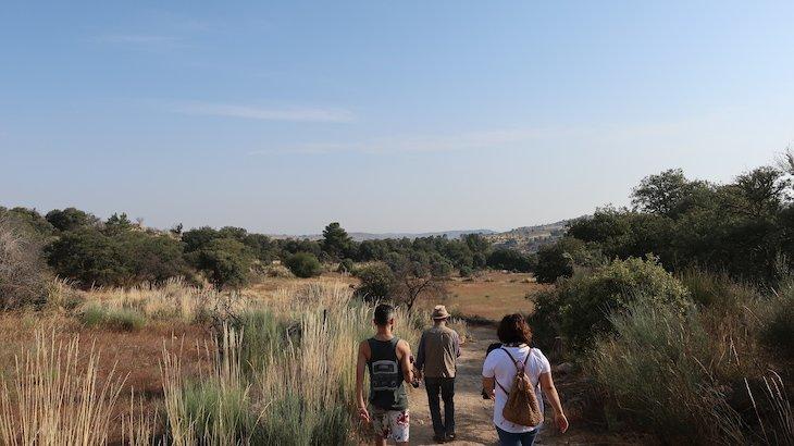 Caminhada no Carrascal - Aldeia do Juízo - Pinhel - Guarda - Portugal © Viaje Comigo