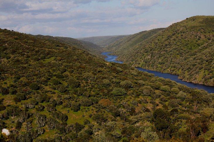 Parque Natural Tejo Internacional © Direitos Reservados