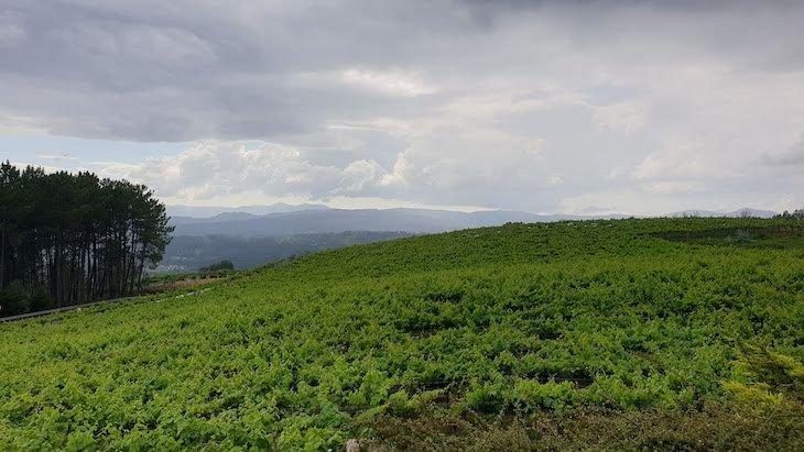 Señorio de Rubiós - Rias Baixas - Espanha © Viaje Comigo