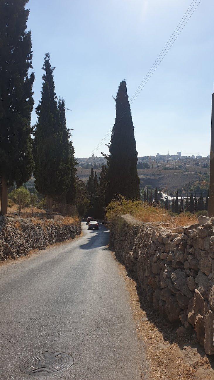 Subida para o Monte das Oliveiras - Jerusalém - Israel © Viaje Comigo