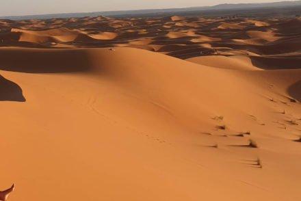 Susana Ribeiro nas dunas, deserto de Marrocos © Viaje Comigo