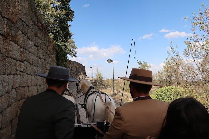 Passeios de charrete em Trancoso - Aldeias Históricas de Portugal © Viaje Comigo