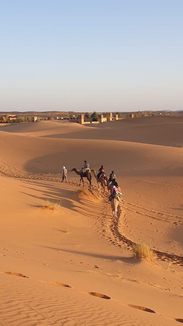 Dromedários nas dunas de Erg Chebbi, Merzouga - Deserto Saara, Marrocos © Viaje Comigo