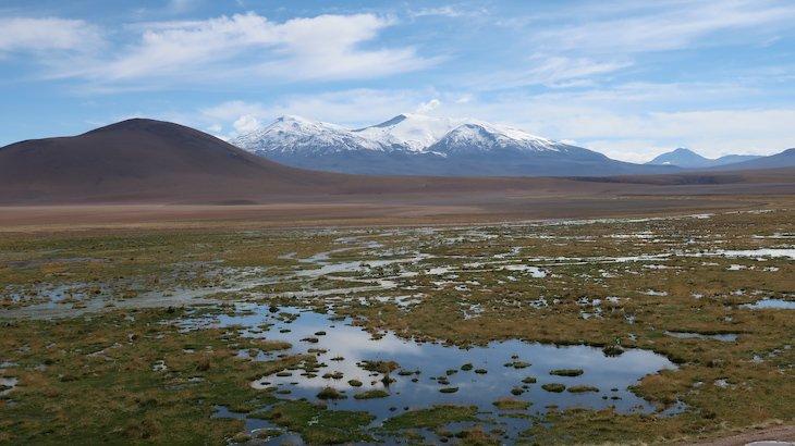 Vista no Vado del Río Putana - Tour do Geyser el Tatio - Atacama - Chile © Viaje Comigo