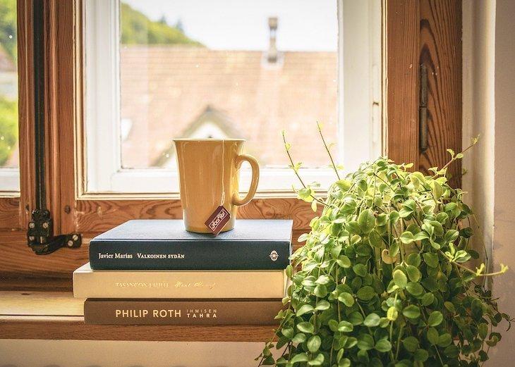 Livros à janela - Foto© LUM3N ©Pixabay