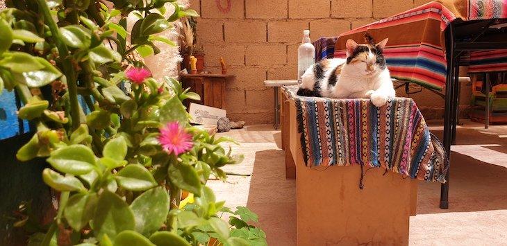 Casa Carmenere- San Pedro Atacama - Chile © Viaje Comigo