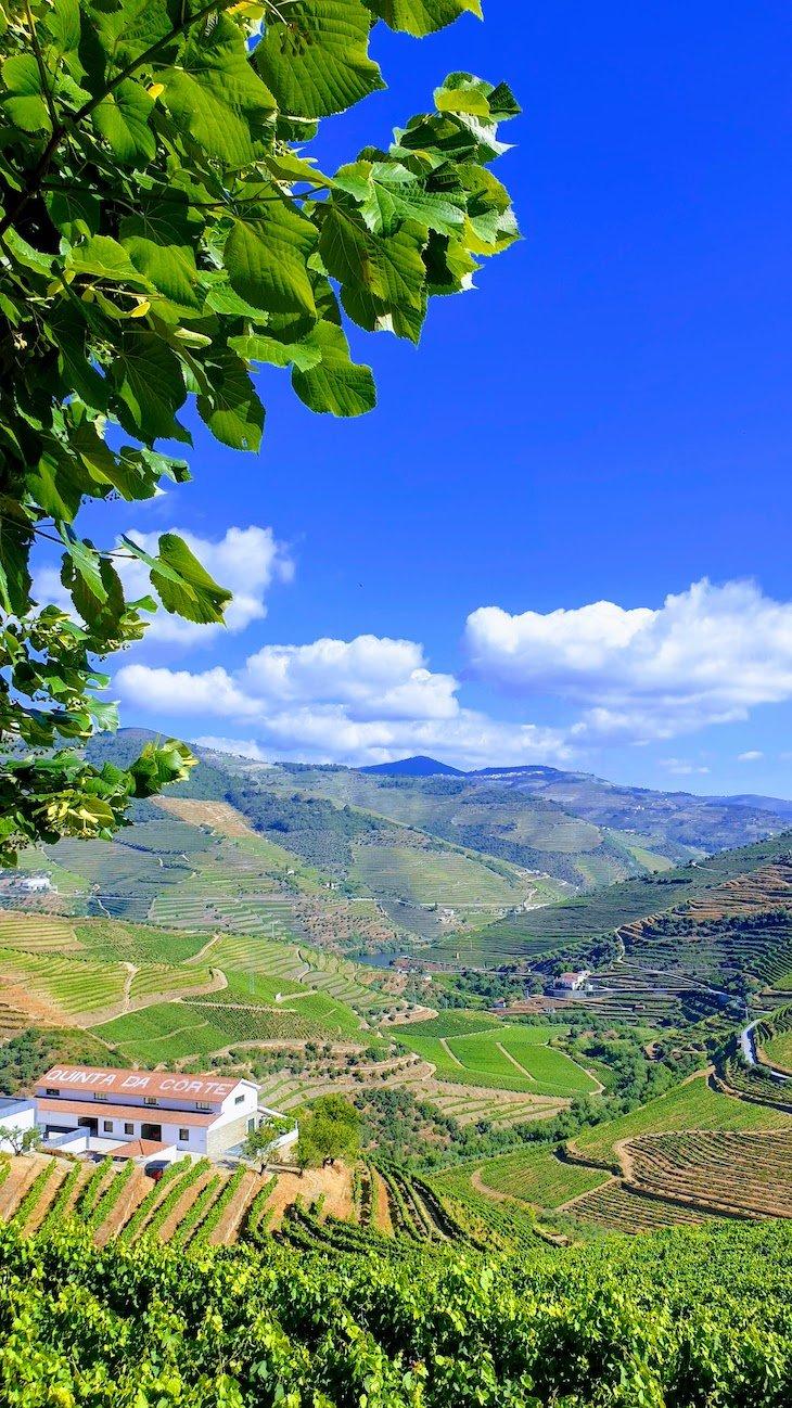 Quinta da Côrte - Valença do Douro - Portugal © Viaje Comigo
