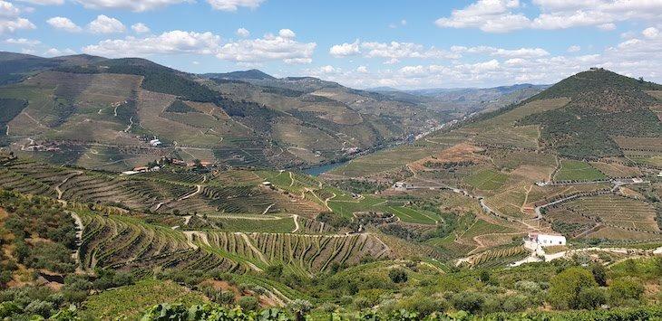 Vale do Douro visto Quinta da Côrte - Valença do Douro - Portugal © Viaje Comigo