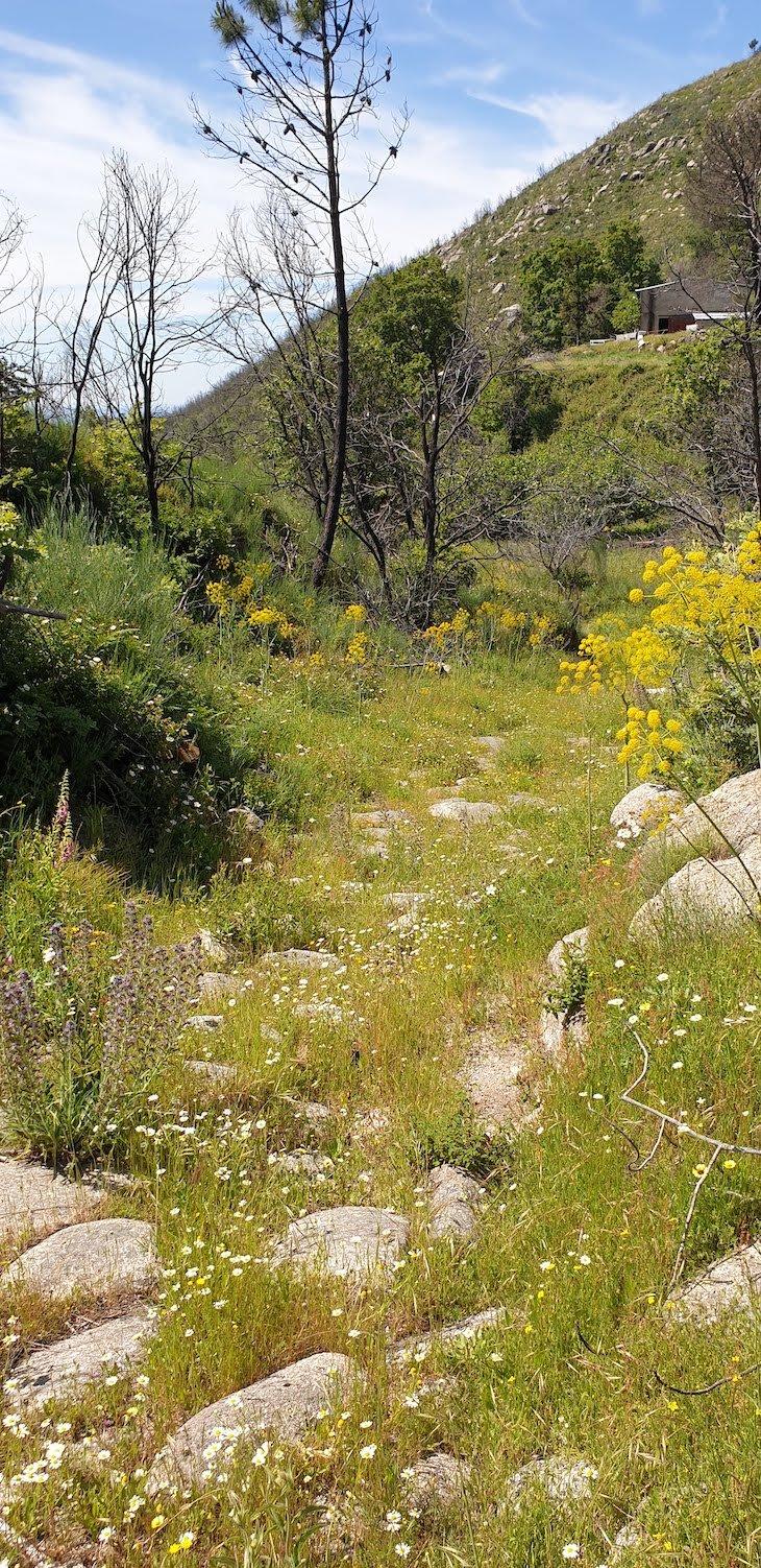Calçada romana, saída de Alpedrinha - Rotas da Gardunha © Viaje Comigo
