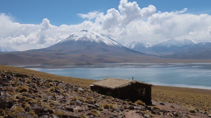 Laguna Miscanti -Tour Lagunas Altiplânicas e Piedras Rojas - Atacama - Chile © Viaje Comigo
