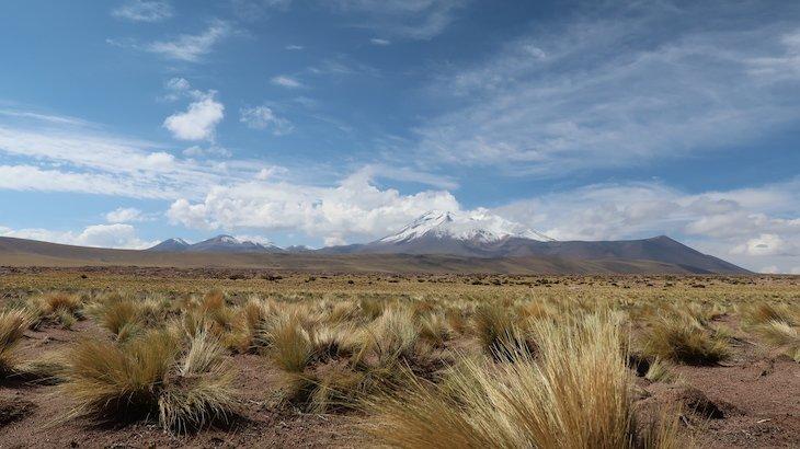 Tour Lagunas Altiplânicas e Piedras Rojas - Atacama - Chile © Viaje Comigo