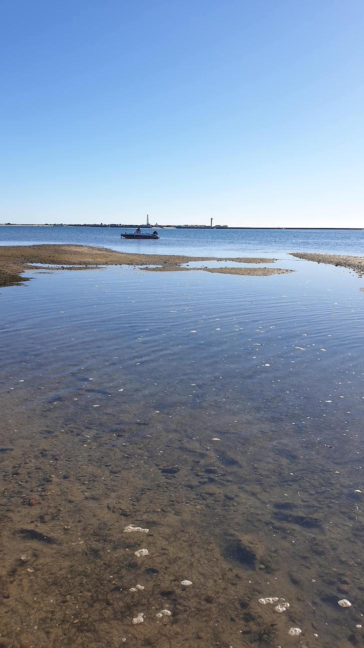 Barco na Ria Formosa - Algarve - Portugal © Viaje Comigo