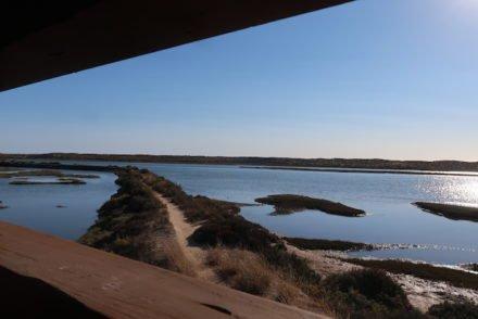 Parque Natural da Ria Formosa - Quinta do Lago - Algarve - Portugal © Viaje Comigo