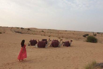 Dubai Desert Conservation Reserve - Dubai - Emirados Árabes Unidos © Viaje Comigo