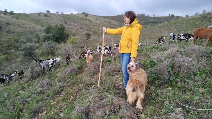 Fui passar o dia com o pastor Nuno Coelho - Alcoutim - Algarve - Portugal © Viaje Comigo