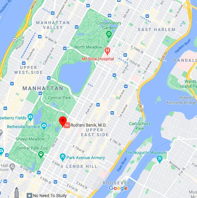 Mapa Quinta Avenida © google