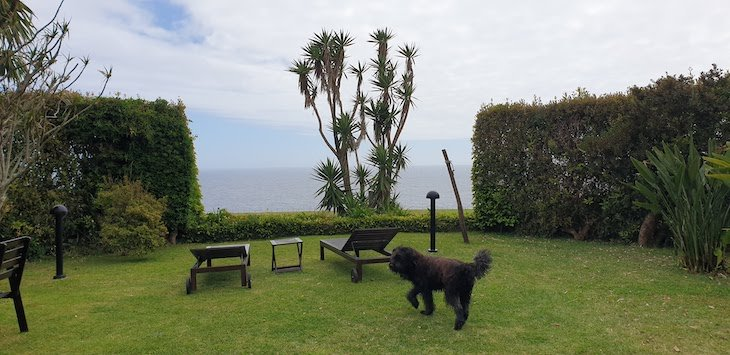 Quinta das Buganvílias - Faial - Açores © Viaje Comigo