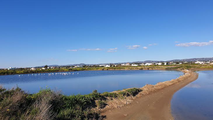 Ria Formosa - Olhão - Algarve © Viaje Comigo