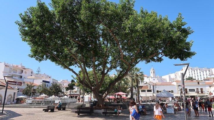 Jardim de Albufeira - Algarve © Viaje Comigo