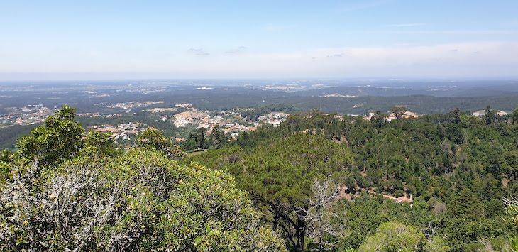 Vista do Miradouro - Mata Nacional do Bussaco - Portugal © Viaje Comigo