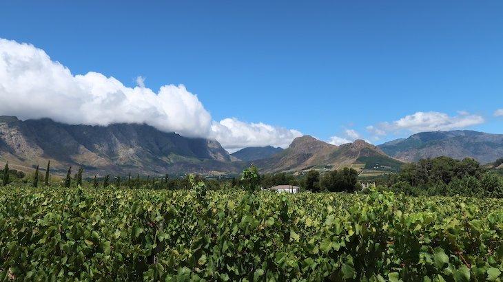 Vinhos no Le Lude, Franschhoek - África do Sul © Viaje Comigo