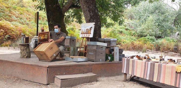 Atelier de Apicultura - Tapada Nacional de Mafra - Portugal © Viaje Comigo