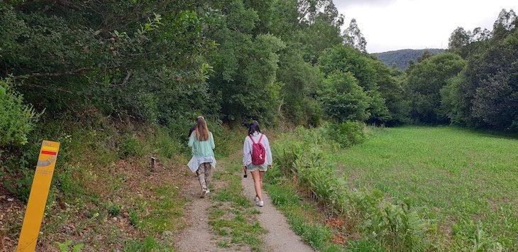 Percurso Pedestre das Quedas de Água de Paredes - Mortágua - Portugal © Viaje Comigo