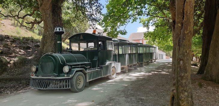 Comboio da Tapada de Mafra - Portugal © Viaje Comigo