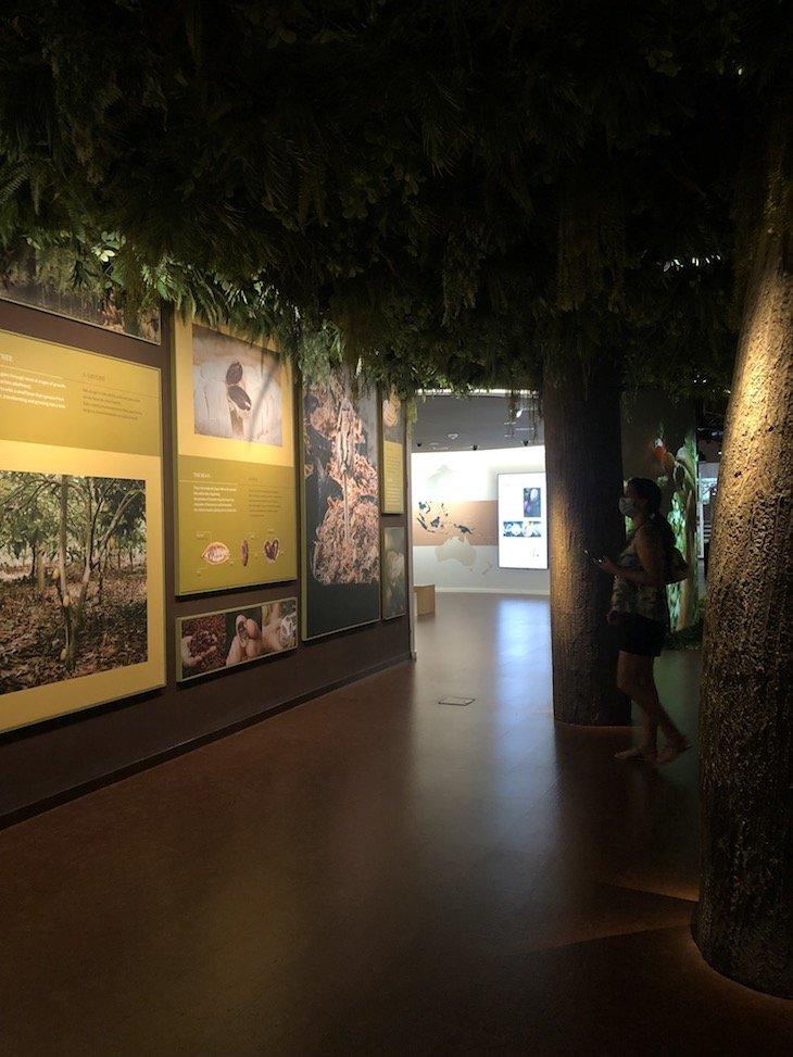 Museu do Chocolate - WOW @ Viaje Comigo